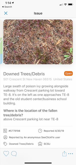 Screenshot of SeeClickFix App Showing a Photo and Details for a Reported Poison Ivy Patch